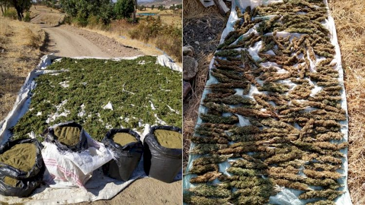 حصريّ.. تركيا تتجه لتمرير شحنات المخدرات لتوفير عجز الاقتصاد