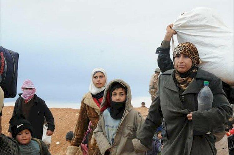 لاجئون سوريون يروون معاناتهم في
