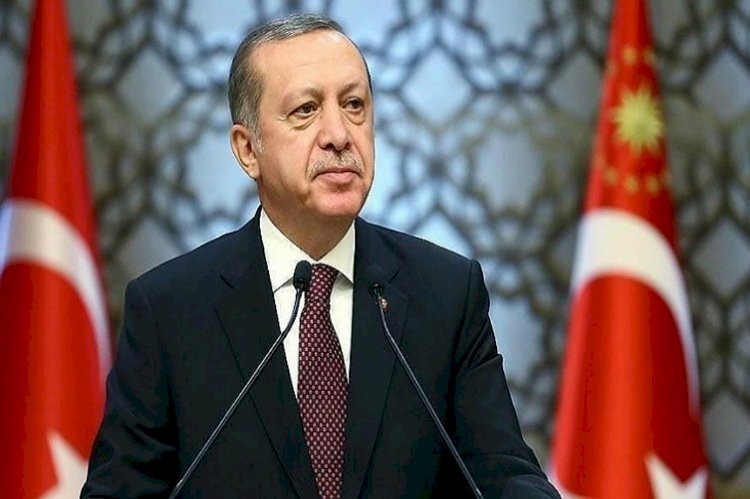 كيف روض أردوغان قاضية بالمحكمة الأوروبية للتغطية على جرائمه؟