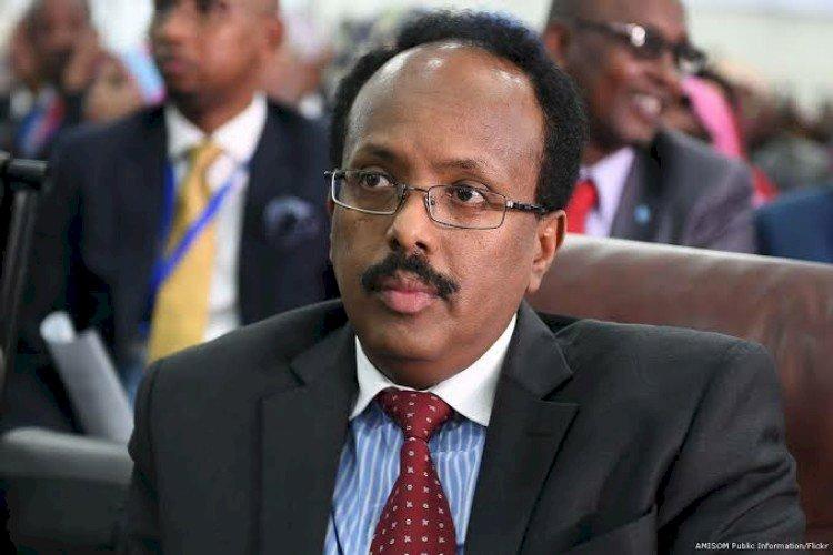 فرماجو وأميركا: الديكتاتور الصومالي بين غضب البيت الأبيض  وجنسيته الأميركية!