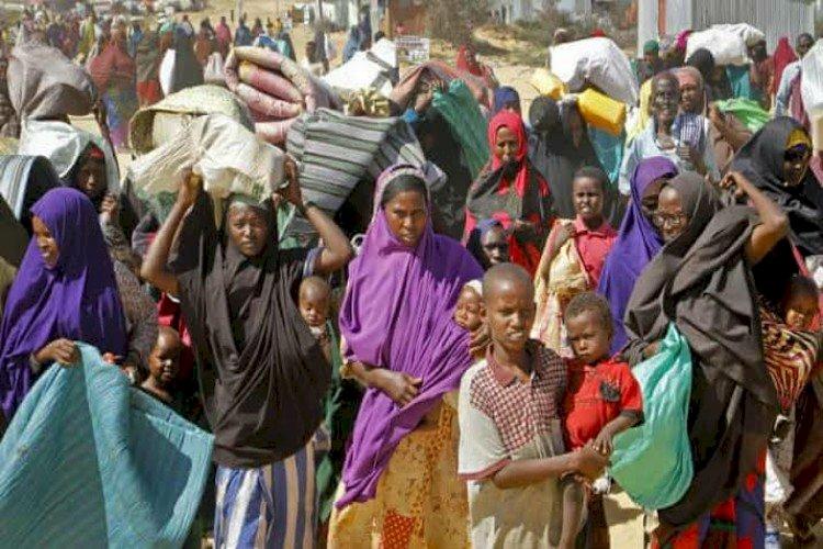 سبوتنيك: الإمارات تدعم استقرار وسيادة الصومال