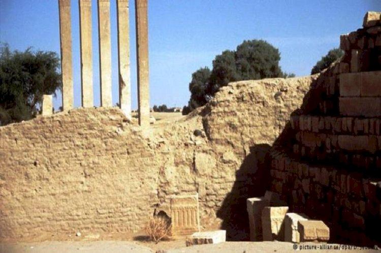 دولة عربية صغيرة تتورط مع الإخوان في تهريب تراث اليمن