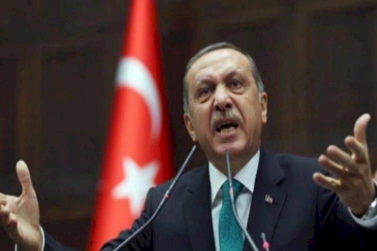 كشف فساد أردوغان وعلاقته بفرنسا.. مَن هو الثري التركي جيم أوزان؟