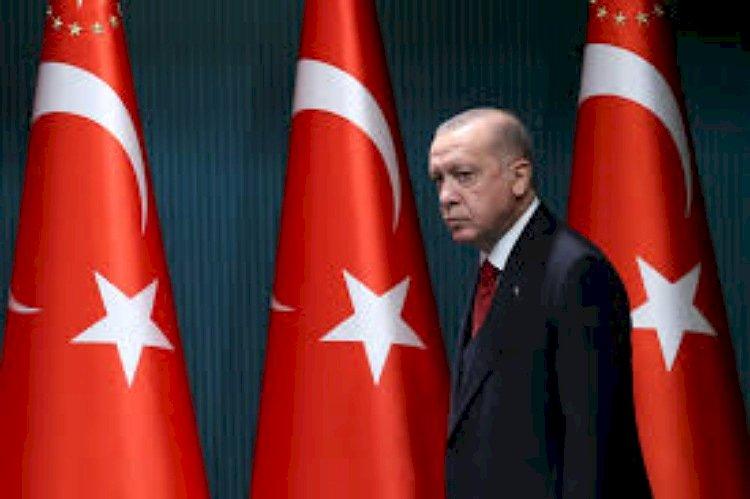 بعد إفراجها عن داعشي قتل العراقيين كيف وفرت تركيا الحماية لعناصر التنظيم؟