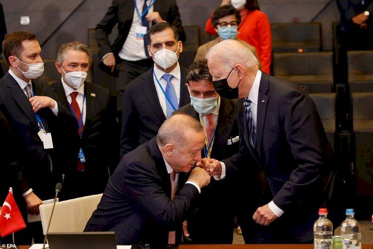 مواقف أردوغان المحرجة.. من انحنائه لأمير قطر لقبلة على يد بايدن