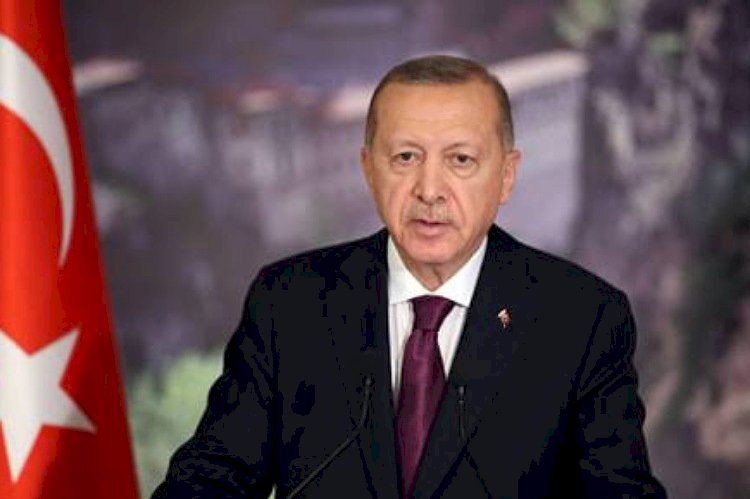 الإفلاس يخيم على الشركات التركية.. الاقتصاد التركي يواصل انهياره