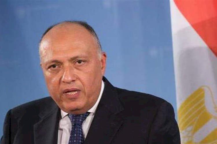 سامح شكري.. أسد الخارجية المصرية لماذا يهاجمه الإخوان؟