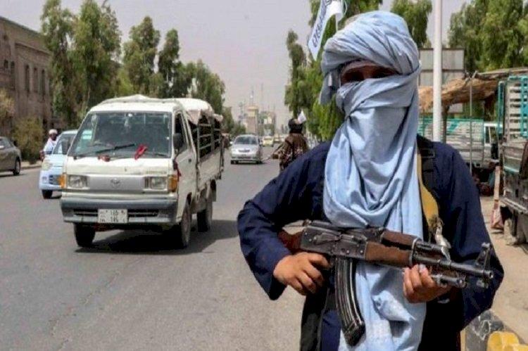 انطلاقًا من ليبيا واليمن.. مصادر تكشف تحركات داخل تنظيم الإخوان لإعلان الولاء لطالبان